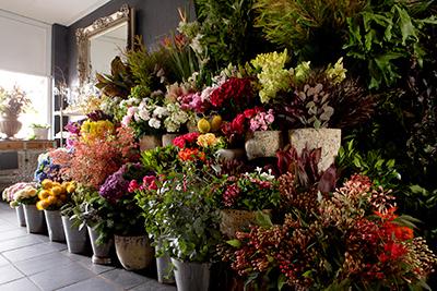 flowers-sales.jpg
